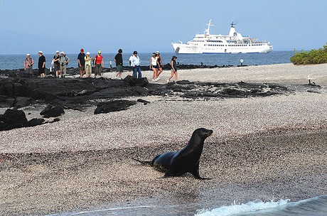 Galapagos Legend, the ship servicing Galapagos North - Central Cruise A (Galapagos Legend)