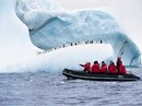 Antarctica & South Georgia Cruise (NG Explorer)