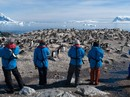Adventure to Antarctica - Highlights of the Frozen Continent