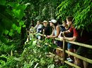 Costa Rica Beaches & Jungles