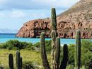 Expedition Baja and Sea of Cortez